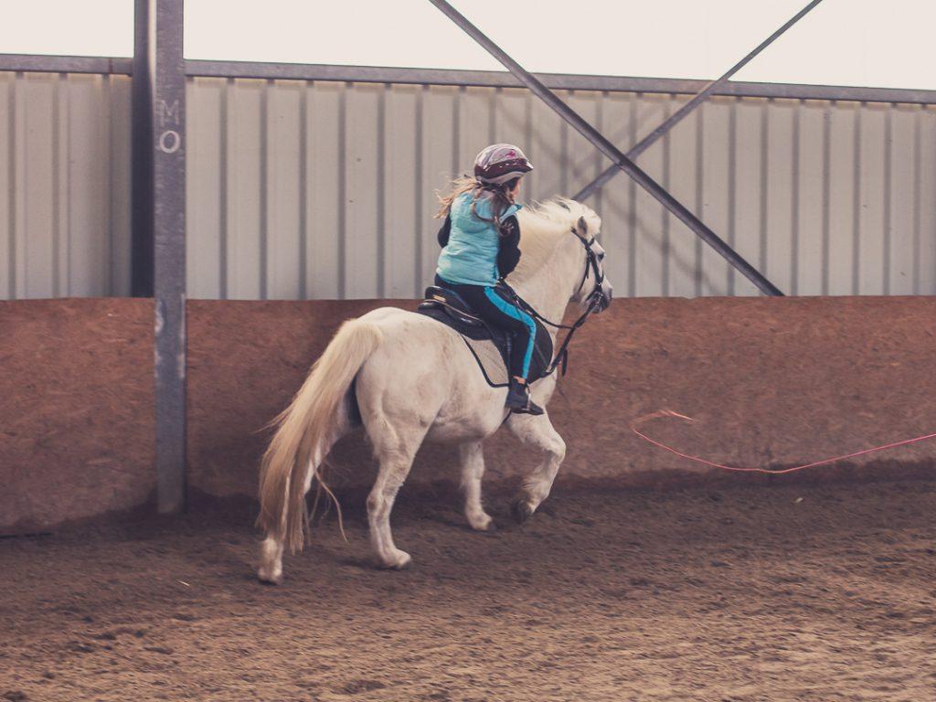Reitunterricht auf Pferd Bounty